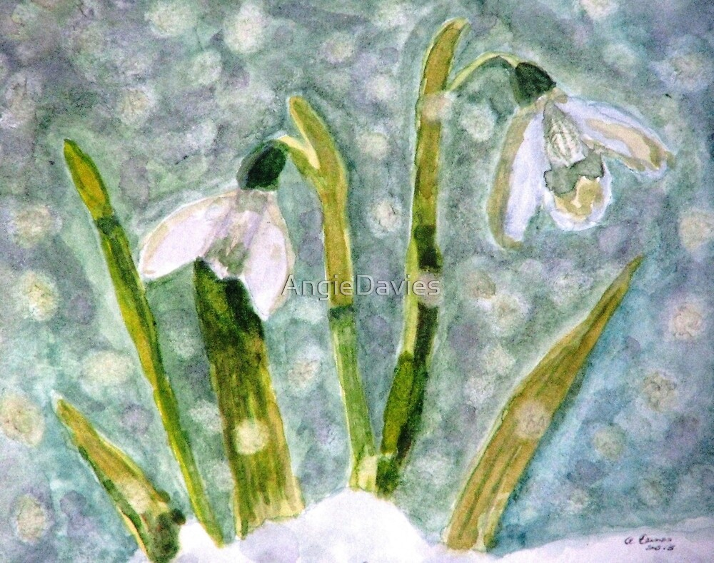 Snowdrops, A Promise of Spring by AngieDavies