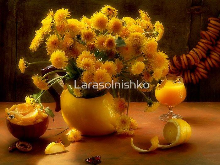Lubov', zizn',leto.....Love, life, summer by Larasolnishko