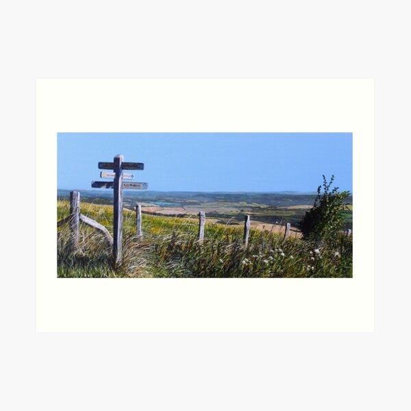 Along The South Downs Way Art Print