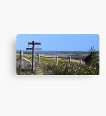 Along The South Downs Way Canvas Print