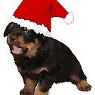 Cute Rottweiler Puppy In Santa Hat by taiche