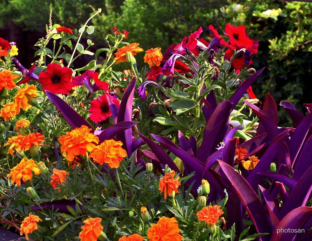 Gardens of Brookgreen by photosan