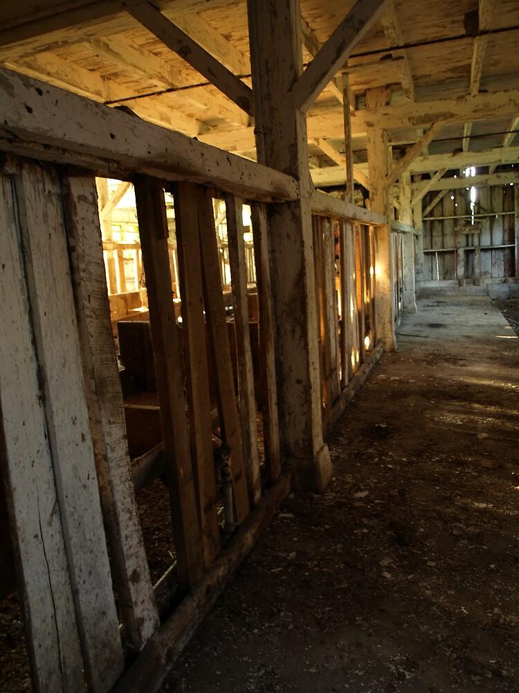 Inside Abandoned Barn by Hannah Grubb