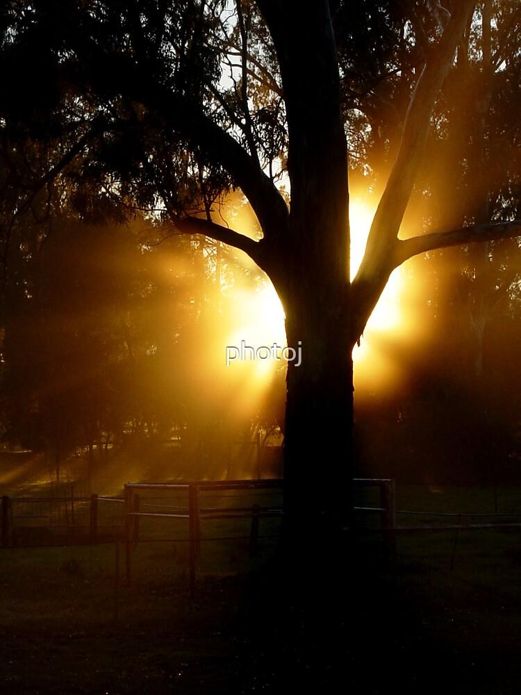 photoj S.A. Bungaree Station Sunrise by photoj