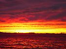 Red Hook Brooklyn sunset small by makarmusic