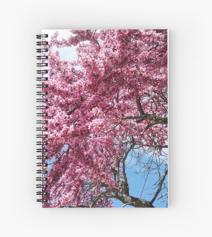 Blossom by Jessica Rose