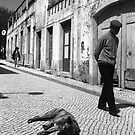 Midday Siesta in Portugal by Isabelle  Delmotte