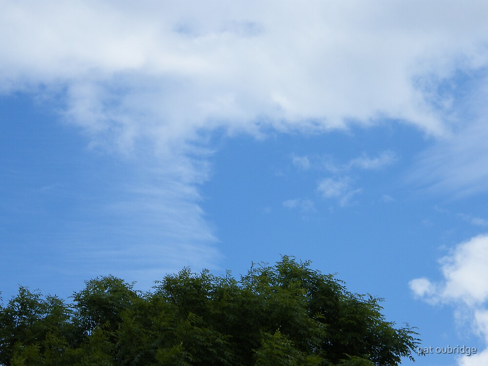 Soft Sky by pat oubridge