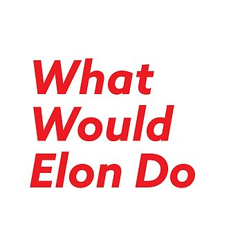 What Would Elon Do by josselinco