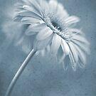 Blue Dancer by AnnieD