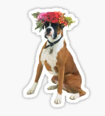 Flower crowned boxer Sticker