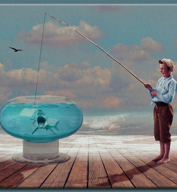 The Fish Bowl by Richard  Gerhard