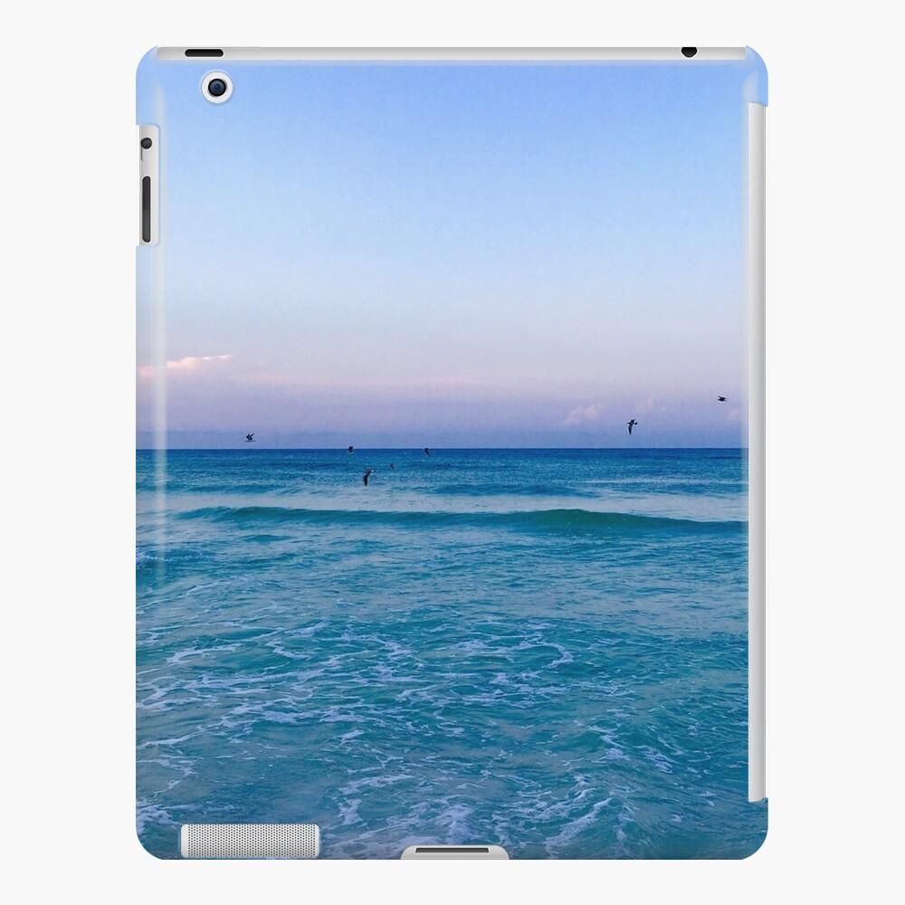 Crystal Waters Funda y vinilo para iPad