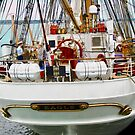 The Eagle in Charlottetown Harbour, PEI, Canada by Shulie1