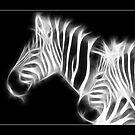 Animalia by Kim Roper