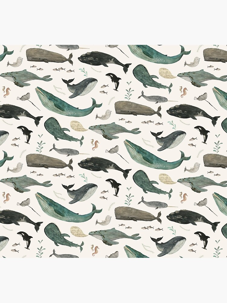 Whale Song by katherineq