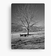 A Wintery Stand Canvas Print