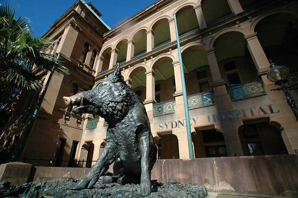 Il Porchellino, Sydney, Australia by muz2142