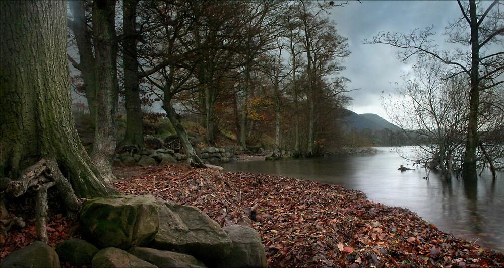 November by Becca  Cusworth
