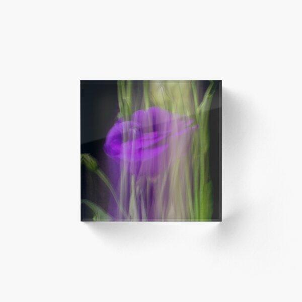 Fleur Blur-Abstract Purple Flower Photo Acrylic Block