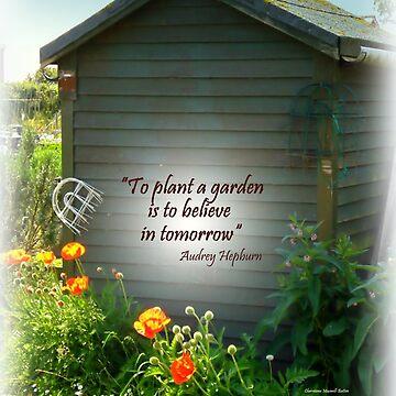 Brightening the Garden  Shed by Sita