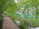 A walk in Plitvice. by Graeme  Hyde