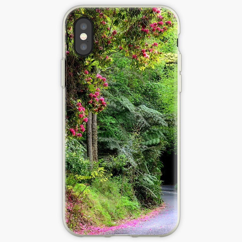 Spring on The Avenue - Mt Wilson NSW iPhone Case & Cover