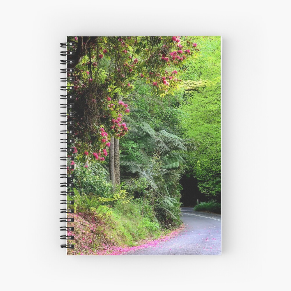 Spring on The Avenue - Mt Wilson NSW Spiral Notebook