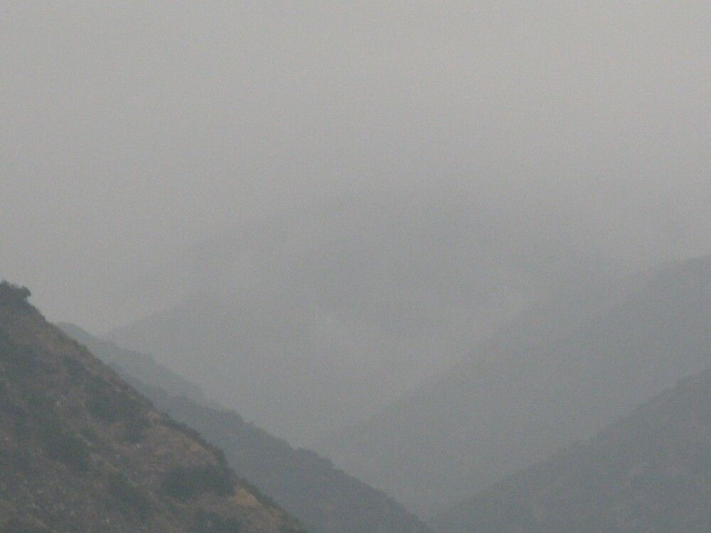 Fog by Warrior