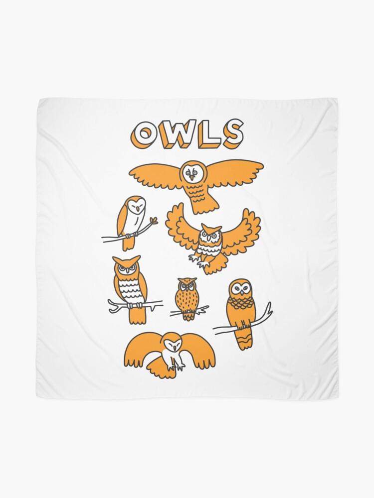 Alternate view of OWLS Scarf