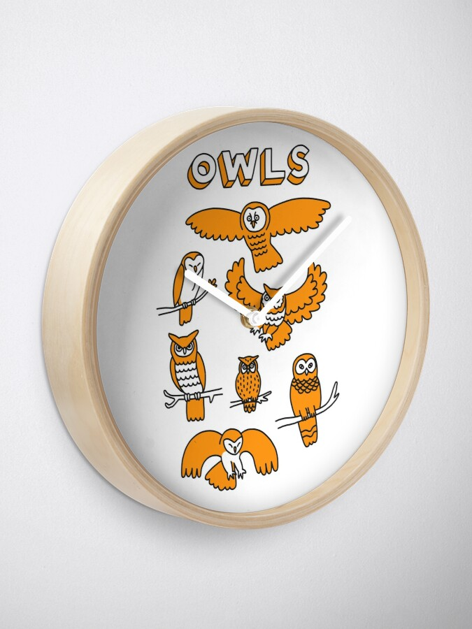 Alternate view of OWLS Clock