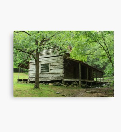 Ogle Place II Canvas Print