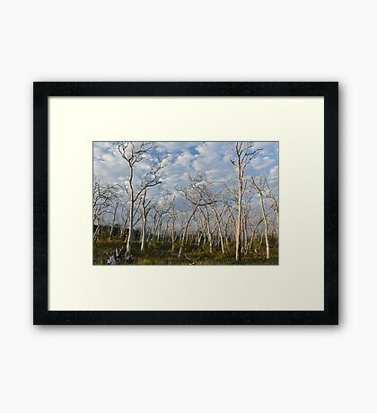 Nature out of balance Framed Print