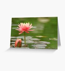 Rise Oh Sweetness Greeting Card