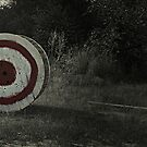 On Target by Scott Mitchell