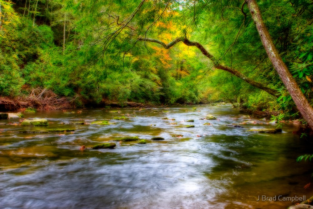 Colorful Creek by J Brad Campbell