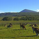 Clarence Peak and a few of the locals by myraj