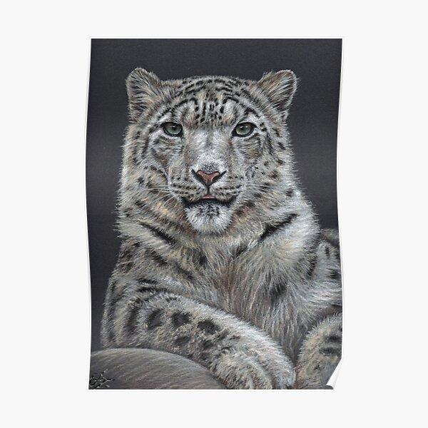 The Snow Leopard - Der Schneeleopard Poster