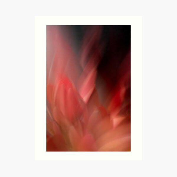 Fleur Blur-Abstract Red Leaves Photo Art Print