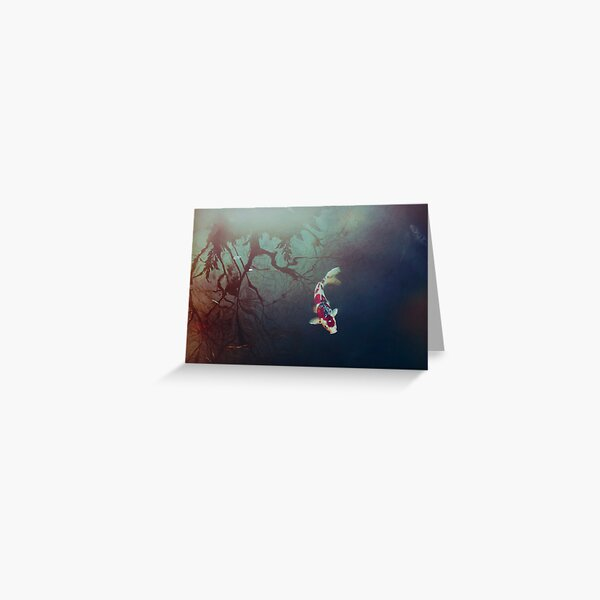 Pond of Reflection Greeting Card