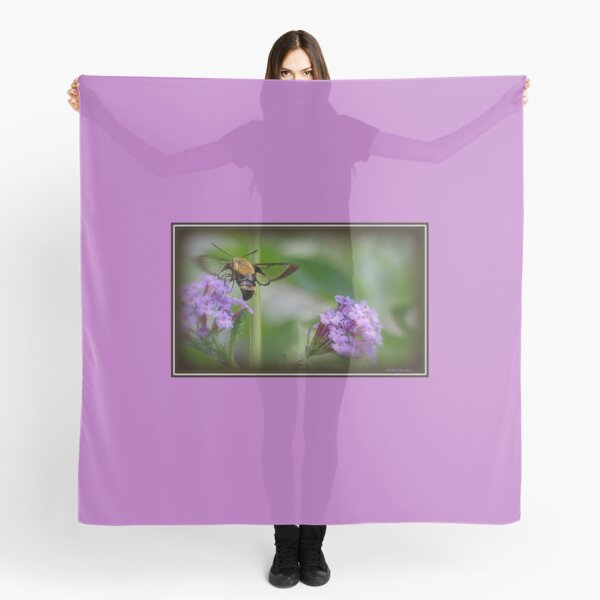 Snowberry Clearwing Hummingbird Moth on a Butterfly Bush Scarf