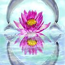 dolphins and lilly book cover by Kelli Maier