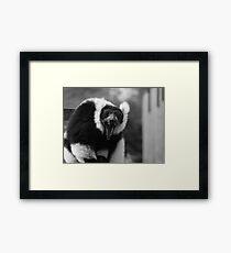 Yawn - black & white Framed Print