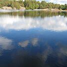 The Lake Thinking by HELUA