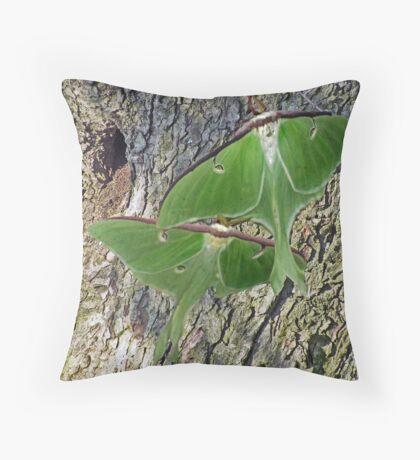 pair of luna moths Throw Pillow