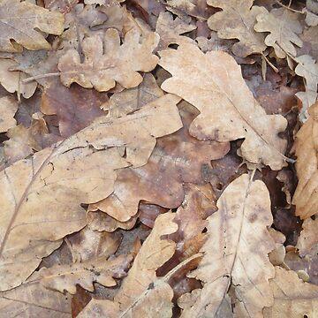 Autumn Leaves by pierredubrelle