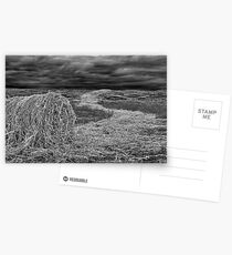 """Haystream"" Postcards"
