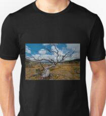 Lake Windermere, Tasmania T-Shirt