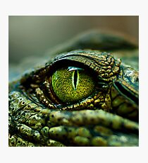 Eye of the Crocodile [Print & iPad Case] Photographic Print