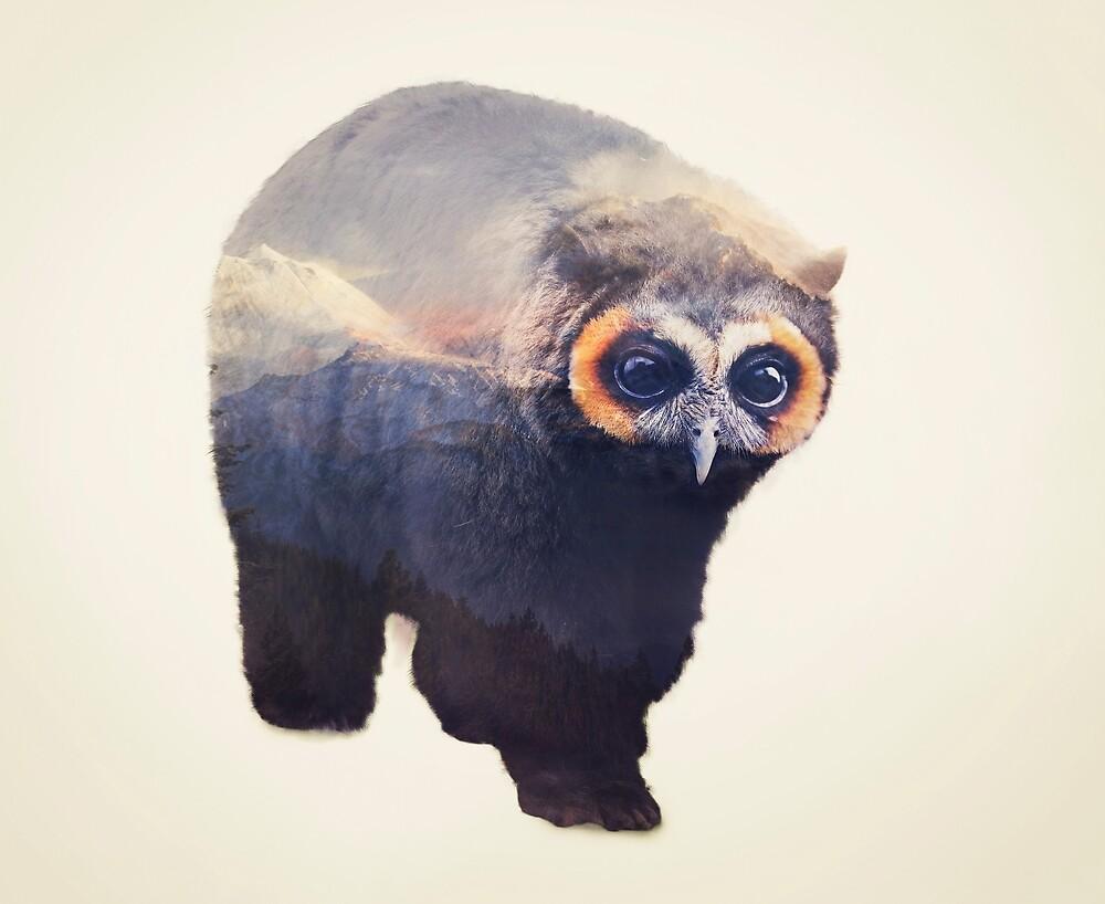 Owlbear in Mountains by Andy Wynn